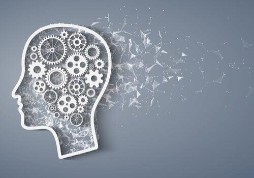 Metacognizione: caratteristiche e peculiarità