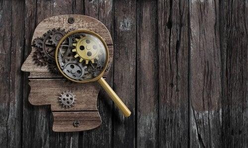 Psicologo forense: che funzioni svolge?