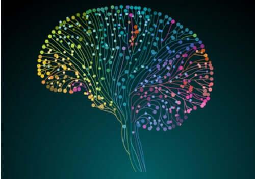 Projekt Human Connectome: otkrivanje našeg mozga Cervello-connessioni-neuroni-colorate