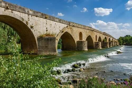 Ponte vicino a Tordesillas