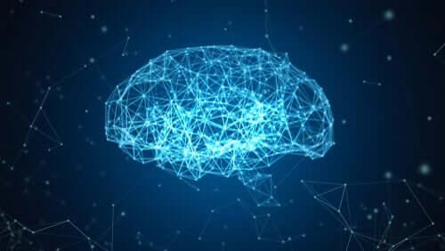 Il progetto Blue Brain