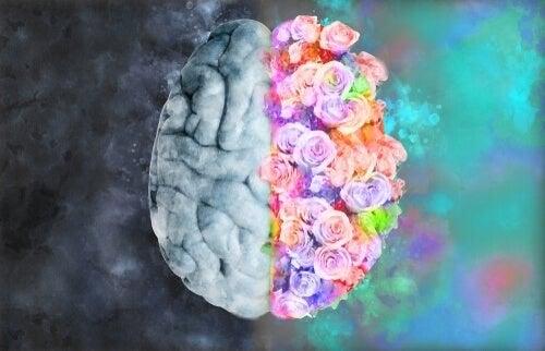 Neuroestetica: capire l'arte con la scienza