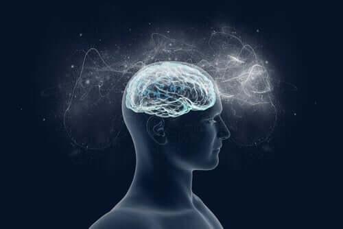 Cervello in 3D