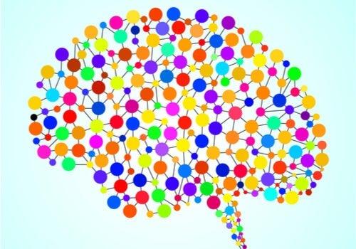 Progetto Connettoma Umano: le 97 aree del cervello sconosciute