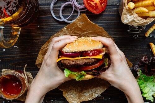 Il cibo spazzatura nuoce al cervello?