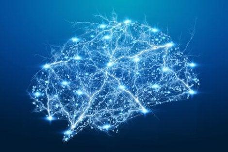Cervello illuminato con rete neurale