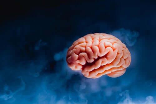 Modello del cervello su fondo scuro