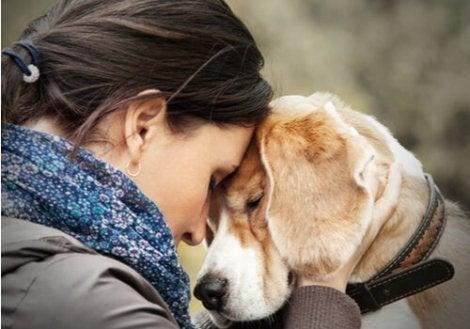 Pet therapy per le persone con disturbo borderline