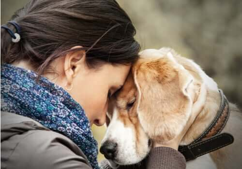 Pet therapy per le persone con disturbo borderline