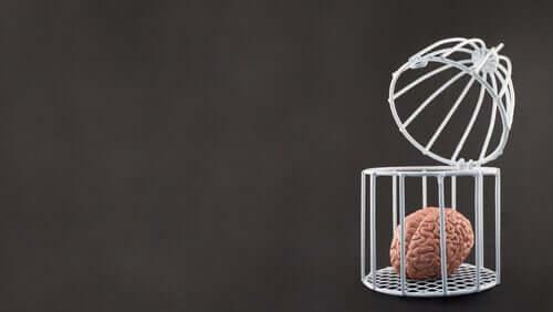 Cervello in gabbia