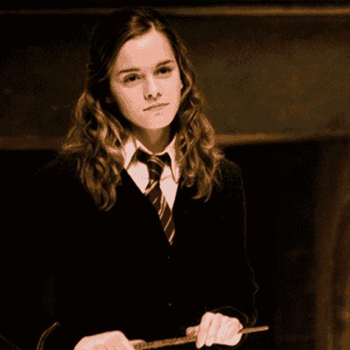 Hermione Granger, femminismo in Harry Potter