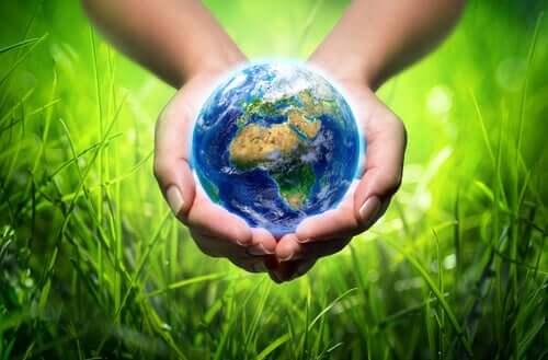 Intelligenza ecologica e sostenibilità