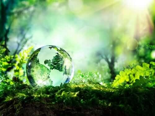 Sfera di cristallo in mezzo alla natura