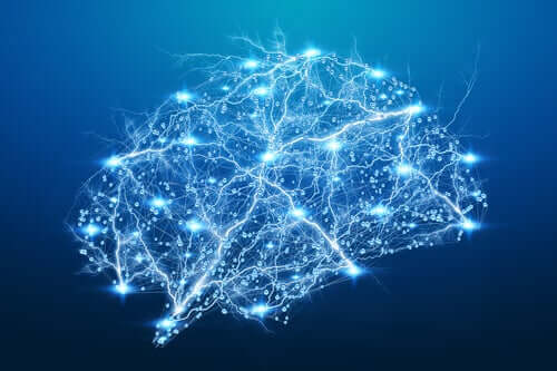 Affascinanti fenomeni cerebrali