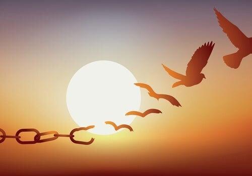 Uccelli che si liberano dalle catene