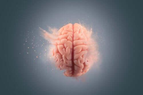 Gli effetti della cocaina sul cervello