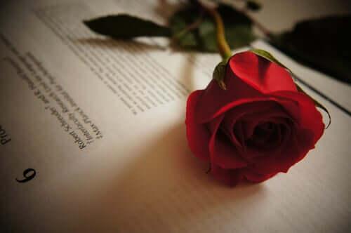Frasi sull'amore di Tirso de Molina