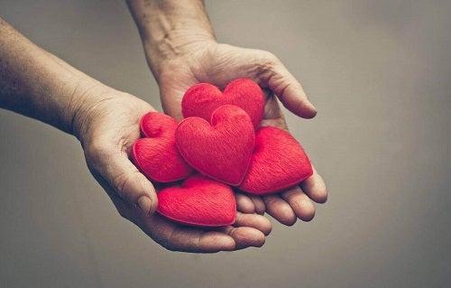 L'importanza dell'attaccamento emotivo