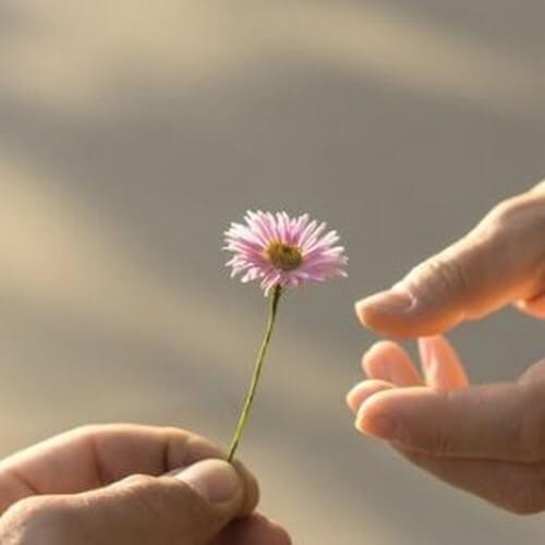 La generosità da una prospettiva psicologica