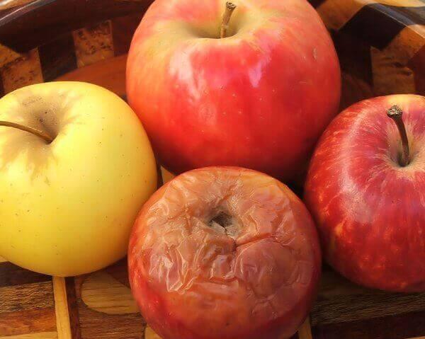 La teoria della mela marcia, cesto di mele