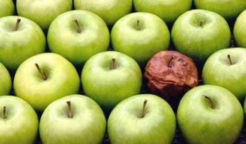 La teoria della mela marcia: i cattivi colleghi