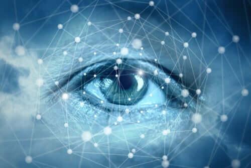 Vista e connessioni neuronali