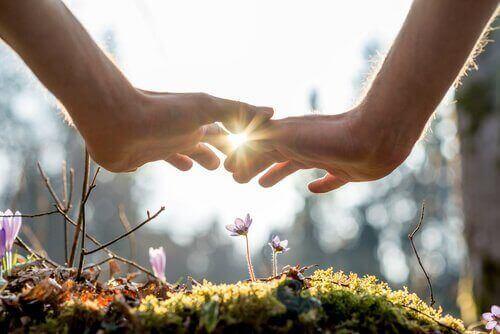 Mani che proteggono l'ambiente