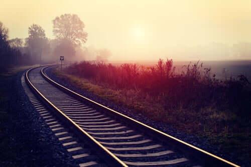 Binario del treno