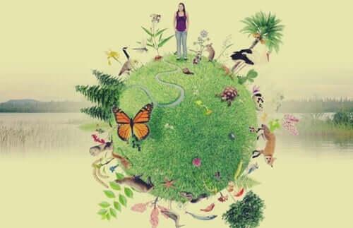 Emodiversità, il piante a delle emozioni