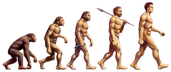 Evoluzione da scimmia a uomo