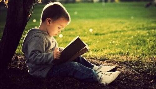 Bambino che legge sotto un albero