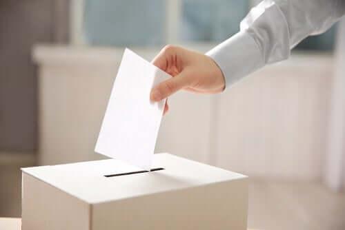 Persona che vota