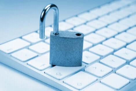 Internet e diritto alla intimità