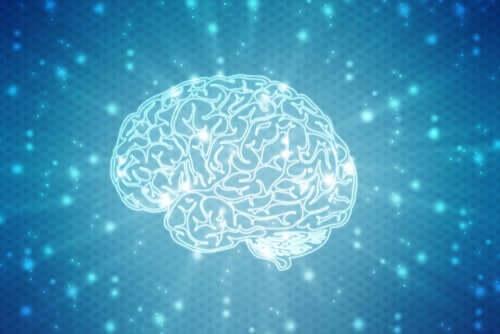 I neuromiti: quali sono i più diffusi?