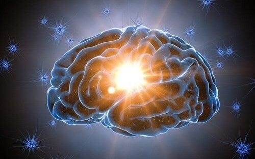 Cervello illuminato perché gli piacciono le sorprese