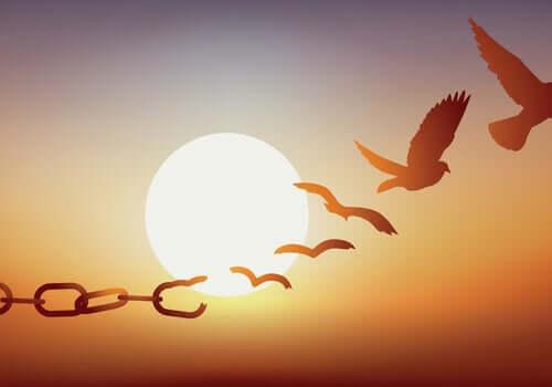 Catene che diventano uccelli che volano