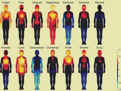 Le diverse emozioni umane e terapia somatica