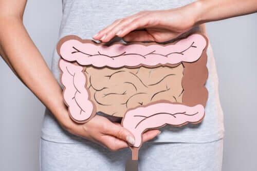 Digestione mentale e problemi intestinali