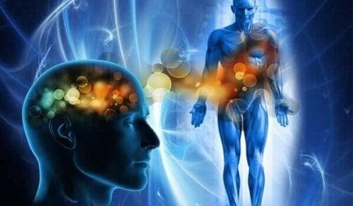 Relazione tra mente e corpo nella terapia somatica