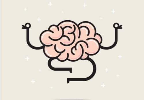 Perché il cervello non sente dolore?