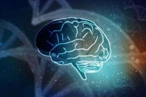Effetti della pubblicità sul cervello