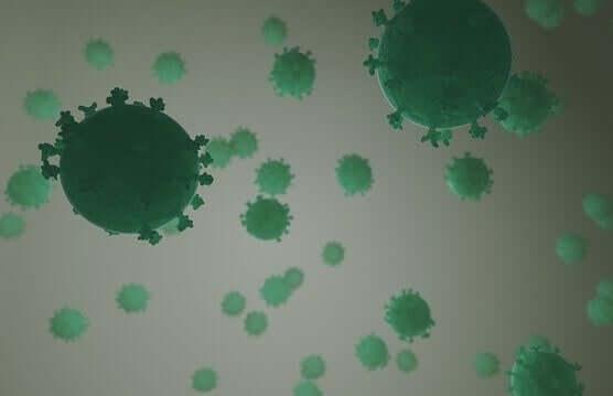 Gruppo di Coronavirus