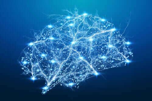 La rete della paura nel cervello