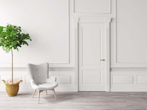 Pianta e sedia in una stanza bianca