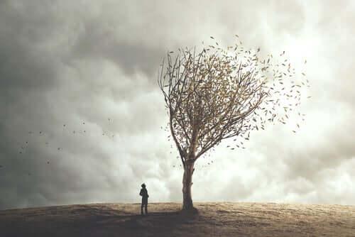 Uomo che guarda un albero