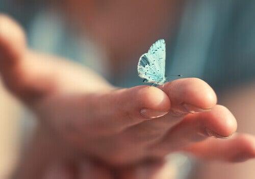 Mano con farfalla azzurra