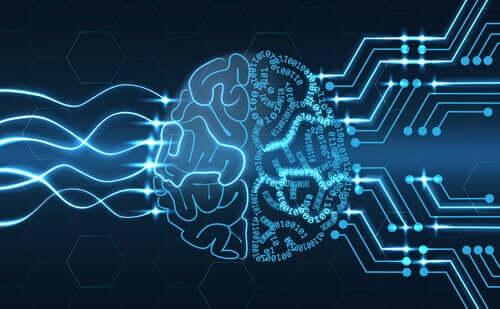 Elaborazione delle onde cerebrali