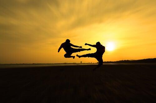 Combattimento di arti marziali