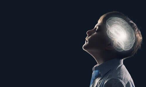 Il cervello di un bambino