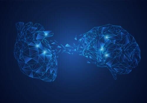 Modello di integrazione neuroviscerale